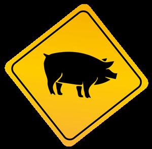 porc évran