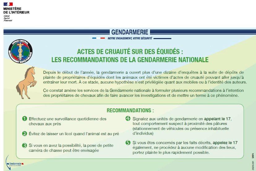 Recommandations-equides